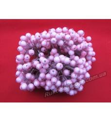 Декоративная калина сахарная цвет розовый