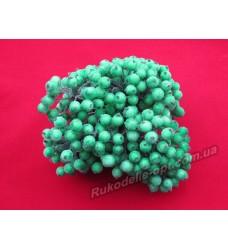 Декоративная калина сахарная цвет зеленый