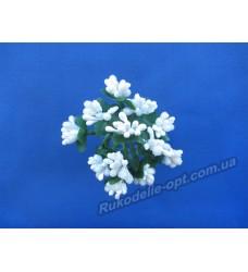 Додатки цветов Незабудка цвет белый