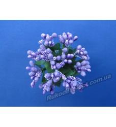 Додатки цветов Незабудка цвет фиолетовый