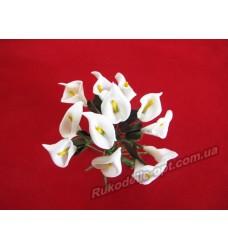 Цветок Калла цвет белый